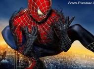 تا به حال مارمولکی به رنگ مرد عنکبوتی دیده اید؟ + عکس