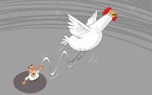 www.parsnaz.ir - غزلی زیبا در وصف گرانی مرغ (بسیار جالب)