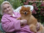حادثه ای که این خانم را به جنگ دوم جهانی برگرداند! +عکس