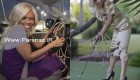 بلندترین ناخن جهان و زندگی عجیب این زن + عکس