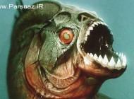یکی از ترسناک ترین موجود در آمازون! (عکس)