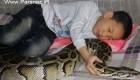 زندگی عجیب این کودک 13 ساله چینی با مار پیتون (عکس)