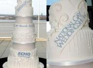 گرانترین کیک عروسی در دنیا (عکس)