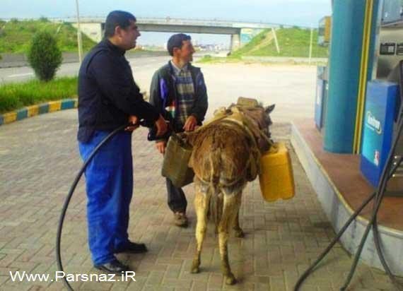 عکس های داغ و خنده دار از سوتی های ایرانی