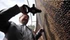 شاهکار هنری این مرد روسی با 1 میلیون دانه قهوه (عکس)