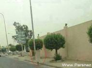 این زن به علت شرایط بد اقتصادی در خیابان برهنه شد (عکس)