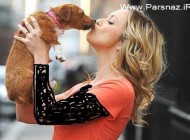 ابراز علاقه متفاوت خانم ها به سگ و شوهر (عکس)
