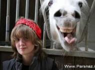 عکس های خنده دار از کارهای جالب حیوانات