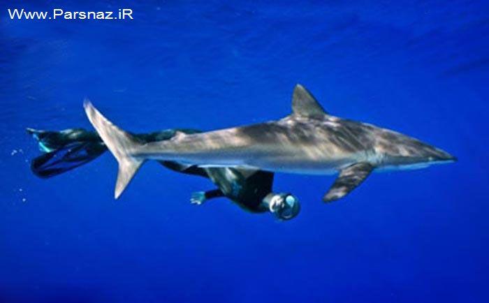 شجاعت زیاد و دیدنی دختری به نام اقیانوس (عکس)