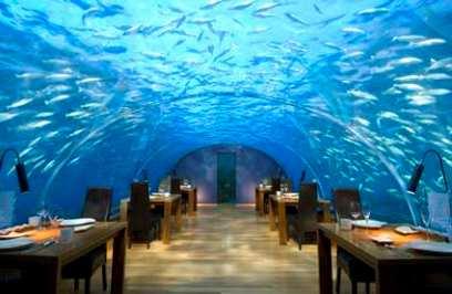 تصاویری از هتلی شگفت انگیز و دیدنی !