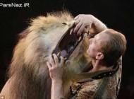 عکس هایی از رقص مرگ با شیر