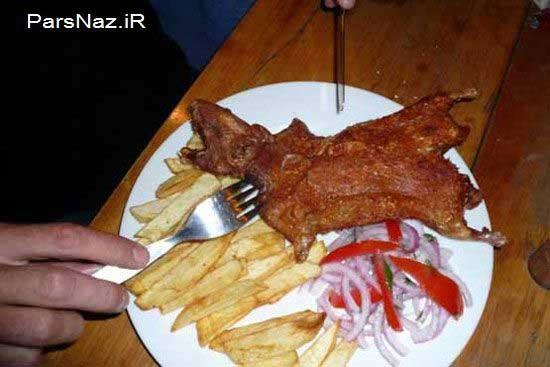 خوردن یک حیوان محبوب در کشور آمریکا (عکس)