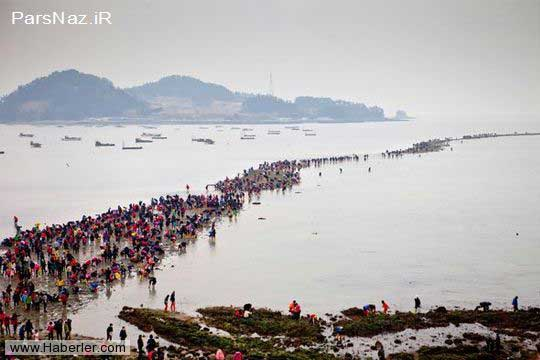 تصاویر جالب از نصف شدن واقعی دریا