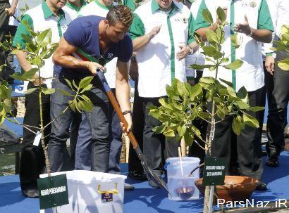 کریس رونالدو در حال کاشتن درخت (عکس)