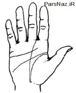 آموزش کف بینی برای شناخت شخصیت (عکس)