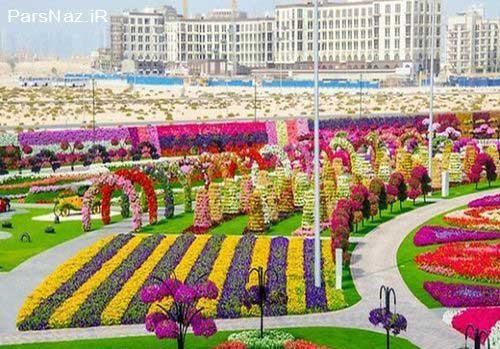جشنواره 45 میلیونی گل در دبی (عکس)
