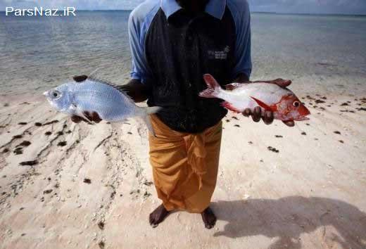 کشوری که در آینده کشور ماهی ها می شود (عکس)