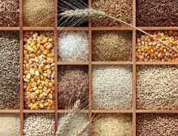 غذاهای مفید و غیر مفید برای روزه داران (عکس)