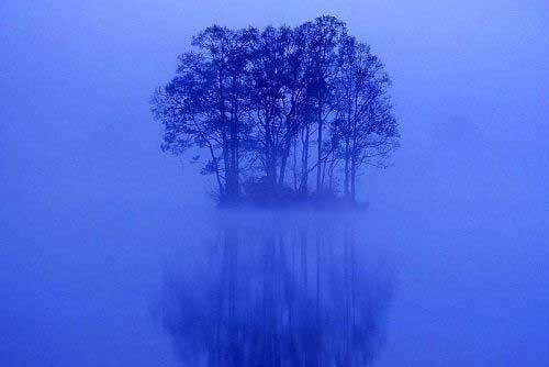 جل الخالق به این همه زیبایی (عکس)