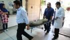 پلنگ ایرانی به اتاق عمل رفت (عکس)