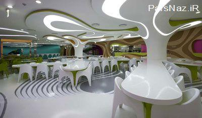 میز و صندلی های درختی بی نظیر (عکس)