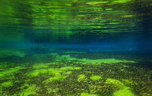 دریاچه ای شگفت انگیز به شفافی دوربین 40 مگاپیکسلی  (عکس)