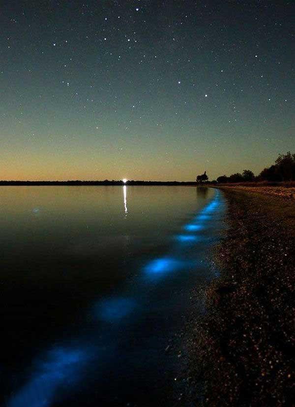 دریاچه ای با امکانات لوستر در شب (عکس)