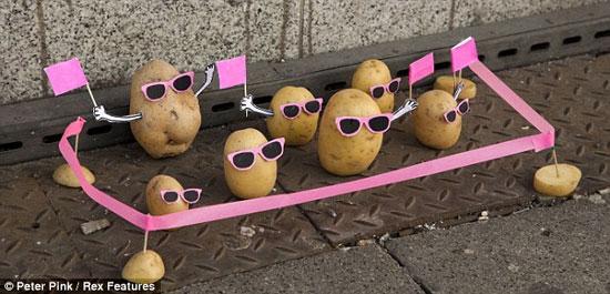 تظاهرات سیب زمینی ها در مقابل پلیس های خیاری (عکس)