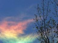 رنگین کمان فوق العاده  حاصل از انعکاس نور با یخ  (عکس)