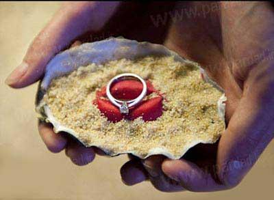 هدیه صدفی که منجر به ازدواج شد (عکس)