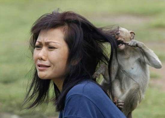 دشمنی عجیب حیوانات به دختران (عکس)