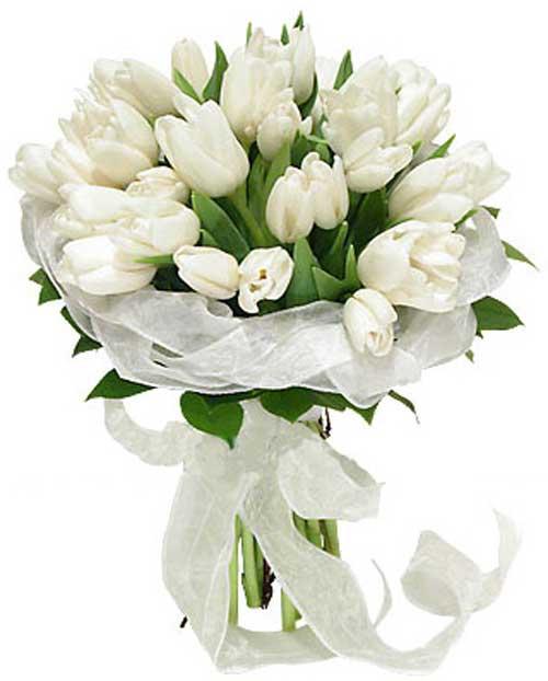 دسته گل های زیبا و شیک مخصوص عروس (عکس)