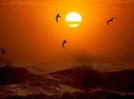 زیباترین شکل ممکن طلوع و غروب خورشید
