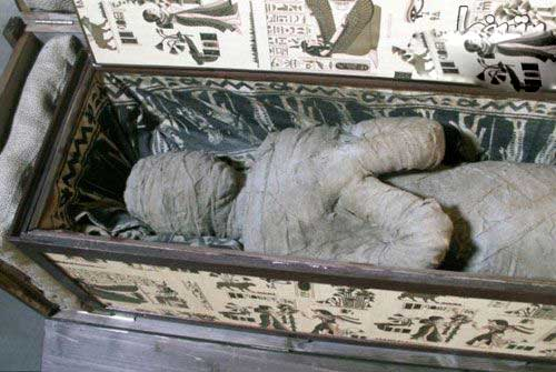 مومیایی خفته در اتاق زیرشیروانی (عکس)