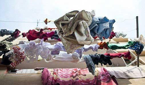 جشن و پایکوبی لباس ها (عکس)