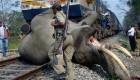 تصادف ناراحت کننده یک فیل به قطار (عکس)