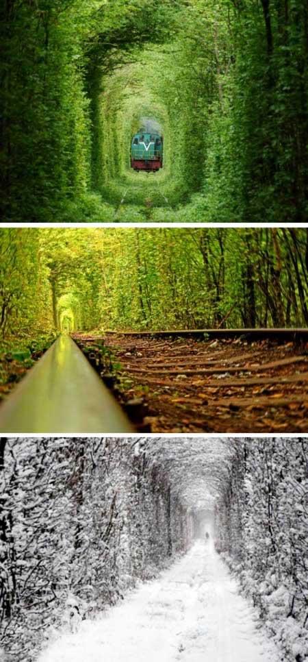 تصاویری از تونل عشق