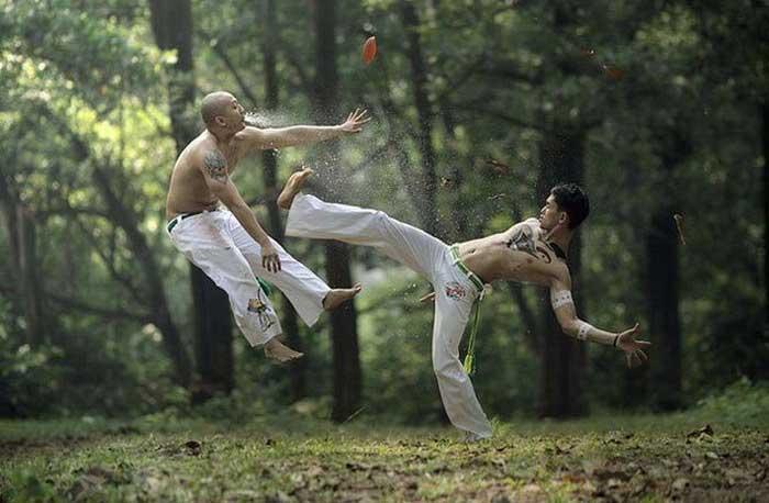 عکس های بسیار خنده دار و جالب از شکار لحظه ها