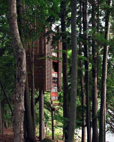 خانه درختی به این عجیبی دیده بودید؟ (عکس)