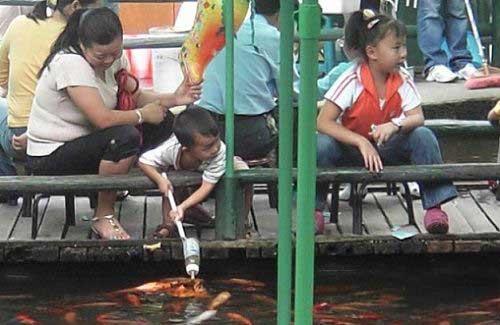 تصاویر جنجالی از ماهی های شیر خوار