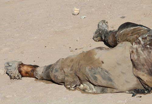 جسد  نوجوان در کانال فاضلاب (عکس)