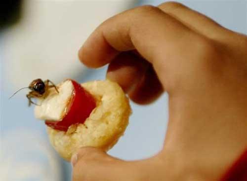 خوراکی هایی که با دیدن آن حالتان بد می شود