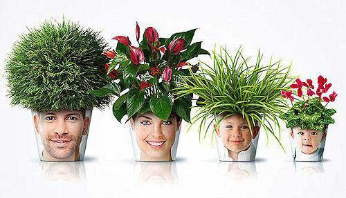 ایده های عجیب برای گلدان های زیبا (عکس)