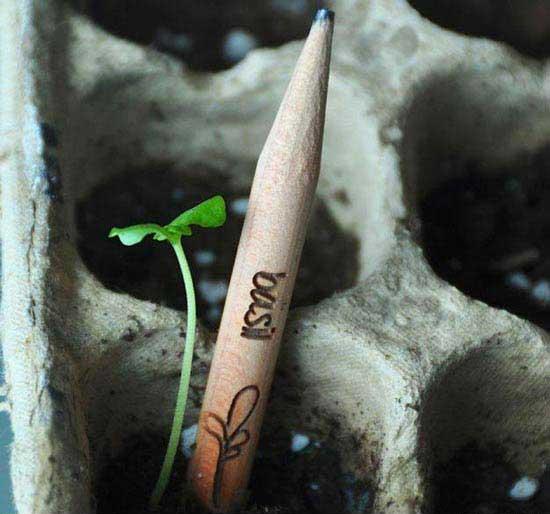 مدادهایی جادویی با ویژگی سبز شونده (عکس)