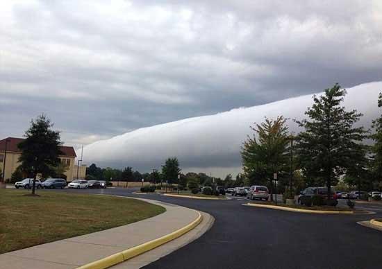 شوکه کننده ترین اتفاق در واشنگتن (عکس)