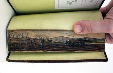 نقاشی کشیدن روی لبه کتاب (عکس)