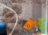 ماهی قرمزی که وارد گینس شد (عکس)