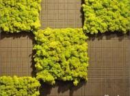 با این کاشی ها روی دیوار خانه باغ ایجاد کنید..(عکس)