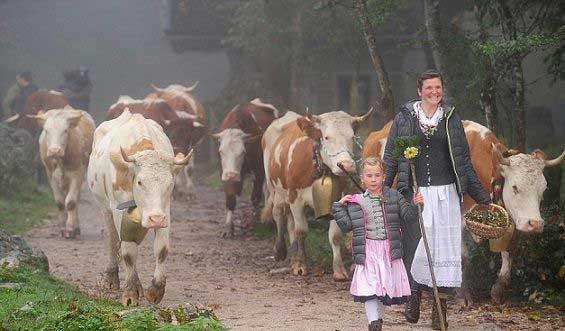 کوچ نشینان از نوع آلمانی (عکس)