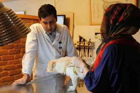 بیمارستانی که بیمارانش انسان نیستند ! (عکس)